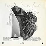 JFDR – White Sun Live Part I: Strings