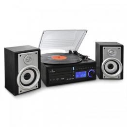 Auna DS-2 Kompaktanlage mit Plattenspieler CD-Player und Radio zum digitalisieren (MP3, 2-Wege Lautsprecher, SD-Kartenslot, USB) schwarz/silber - 1