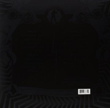 Black Ice [Vinyl LP] - Cover farblich sortiert [Vinyl LP] - 2