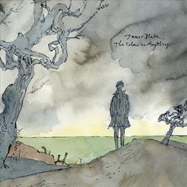 The Colour in Anything (Vinyl/180gr) [Vinyl LP] -