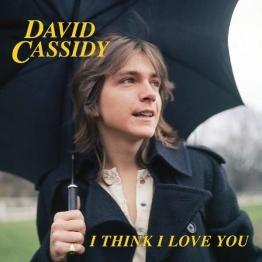 I think I love you - David Cassidy